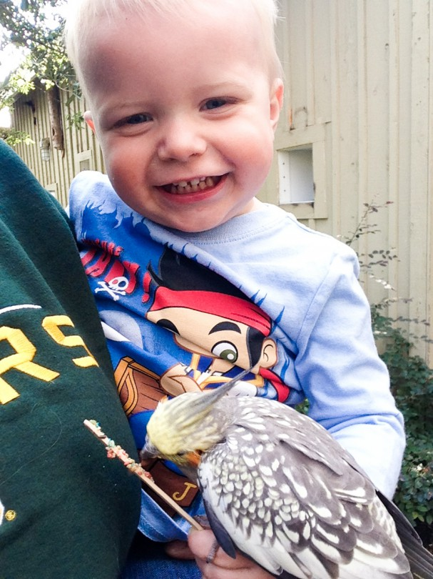 Luke loves feeding the birds and even doesn't mind them landing on him!